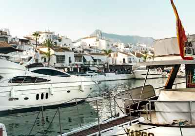 view of yachts at marina